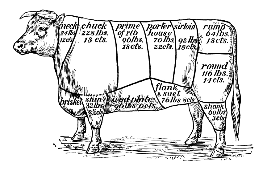 Butcher Chart Lamb Vector 6437847 besides Search furthermore A Tisket A Tasket A Brisket In My Basket besides The Cuts also Butchering A Goat Diagram. on beef chart cuts of meat